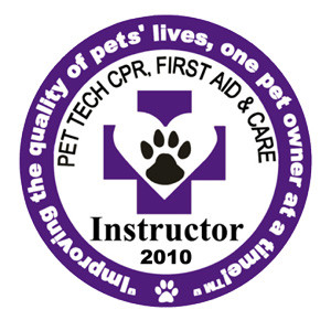 Patch_Instructor_2010